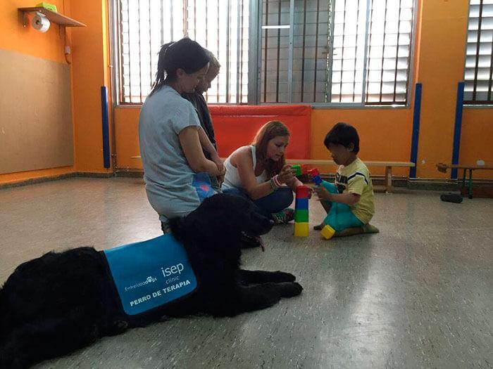 Niños con autismo entrelazadogs