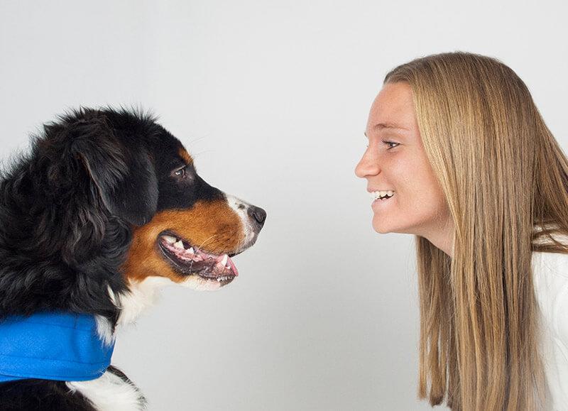 Beneficios sociales entrelazadogs
