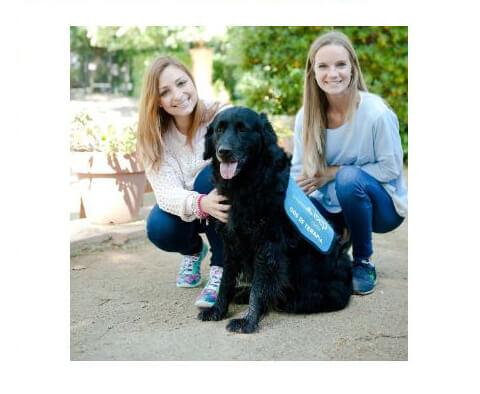 Prensa terapia con perros