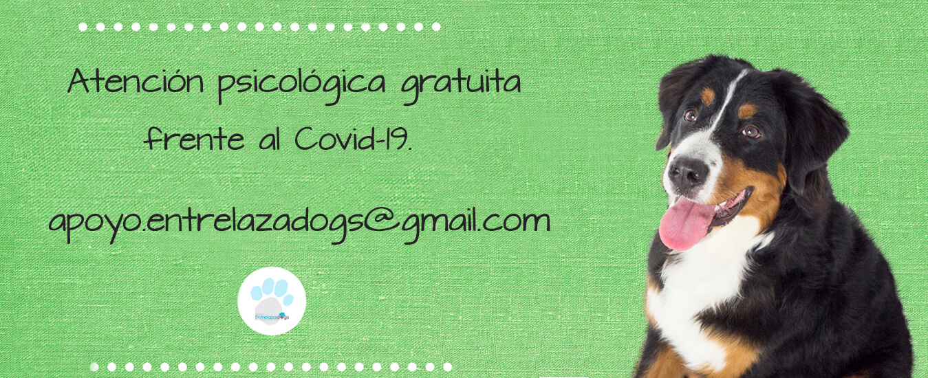 Ayuda psicológica coronavirus